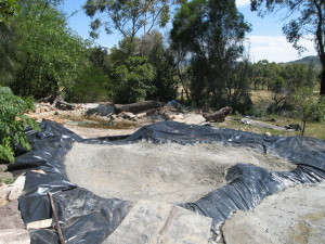Pond Building Wallis Creek Watergarden