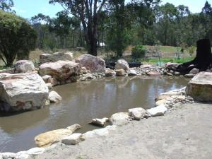 Freshly Filled Pond